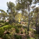 Vente appartement Sanary-sur-mer 83110